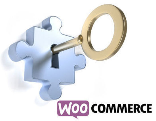 Picture of WooCommerce Turn-Key Solution